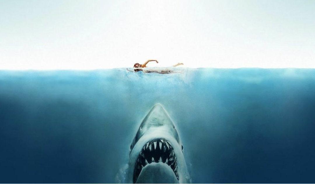 10 Najboljih filmova s Morskim Psima