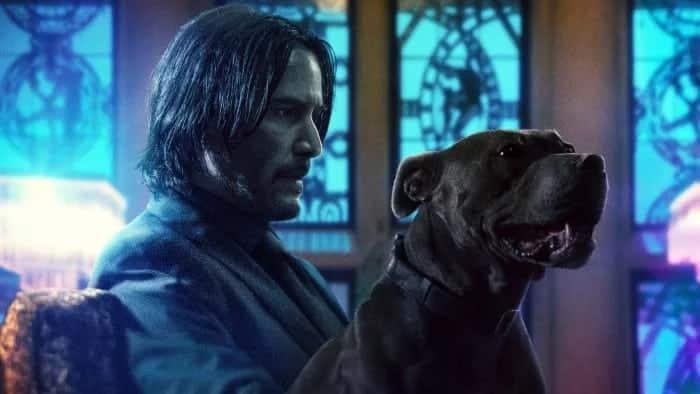 John Wick se vratio s novim psom u najnovijim posterima