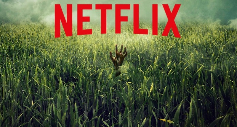 Stigao je prvi Trailer za nadolazeći Netflixov Horor film prema knjizi Stephena Kinga i njegovog sina Joe Hilla 'In the Tall Grass'
