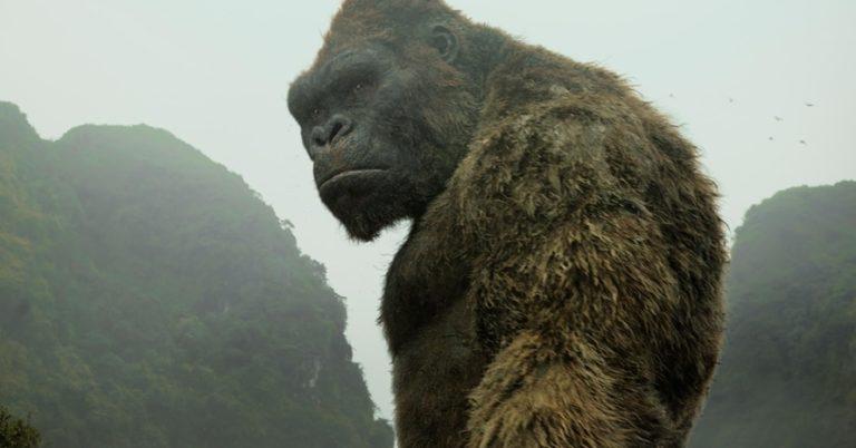 'Kong Vs. Godzilla' prequel strip otkriva prvi pogled na odraslog King Konga