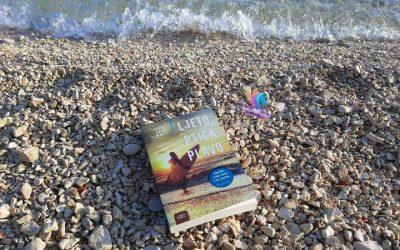 Recenzija knjige: Ljeto. Ptica. Plavo.
