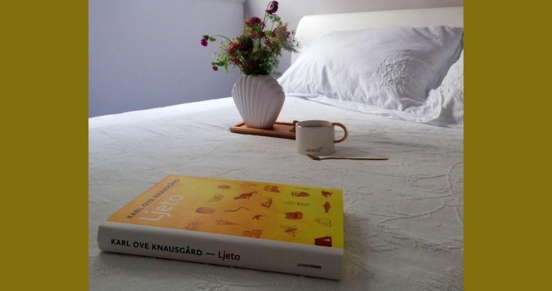Recenzija knjige: Ljeto